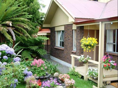 Khi trồng cây trong vườn nên chú ý chọn cây theo phong thủy để mang lại nhiều lợi ích cho nhà bạn.