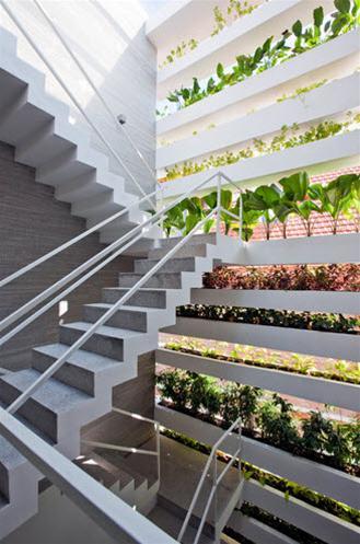 """Thiết kế """"Nhà cao tầng xanh"""" ở tầng Sài Gòn"""