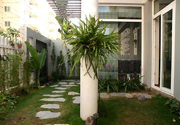 Thiết kế sân vườn cho nhà phố